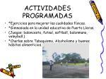 actividades programadas3