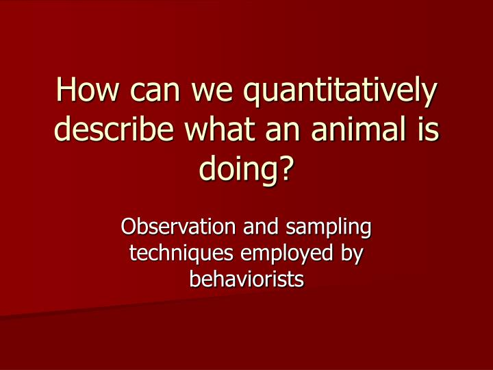 how can we quantitatively describe what an animal is doing n.