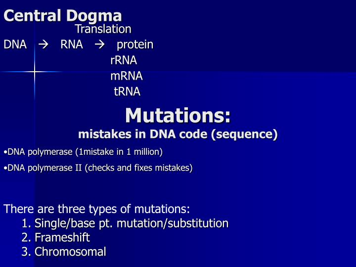 central dogma n.