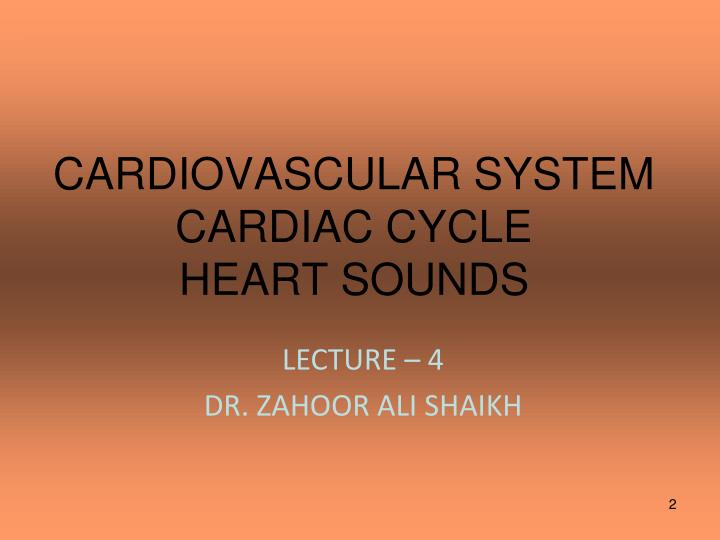 Cardiovascular system cardiac cycle heart sounds
