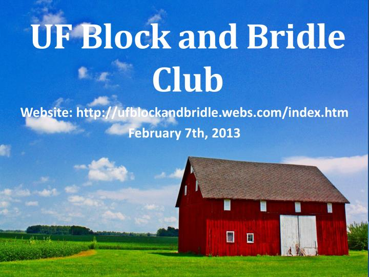 Uf block and bridle club