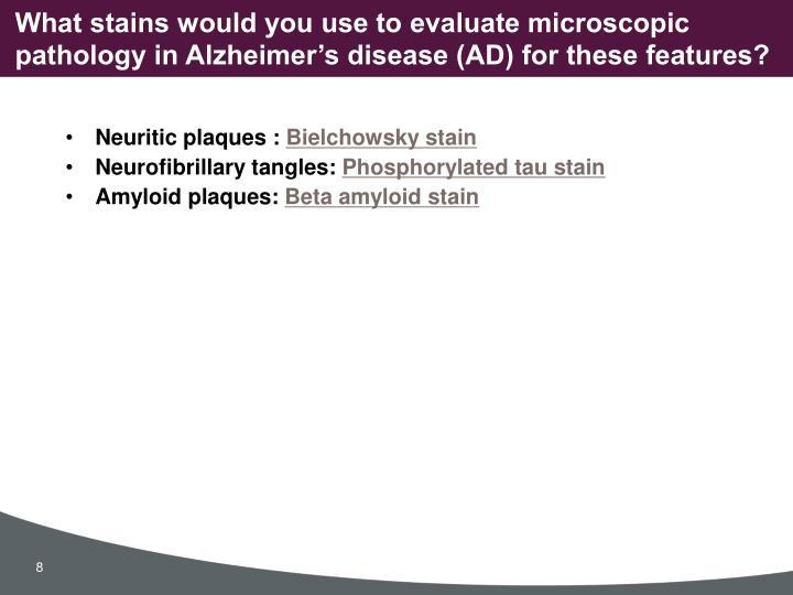 Neuritic plaques :