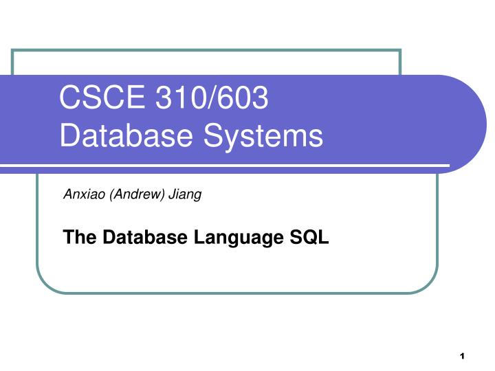 csce 310 603 database systems n.