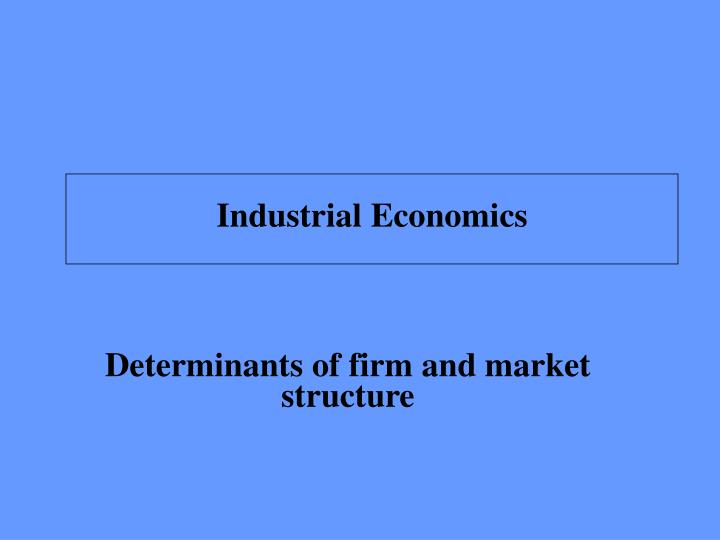 determinants of firm and market structure n.