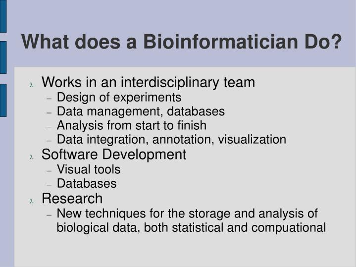 What does a Bioinformatician Do?