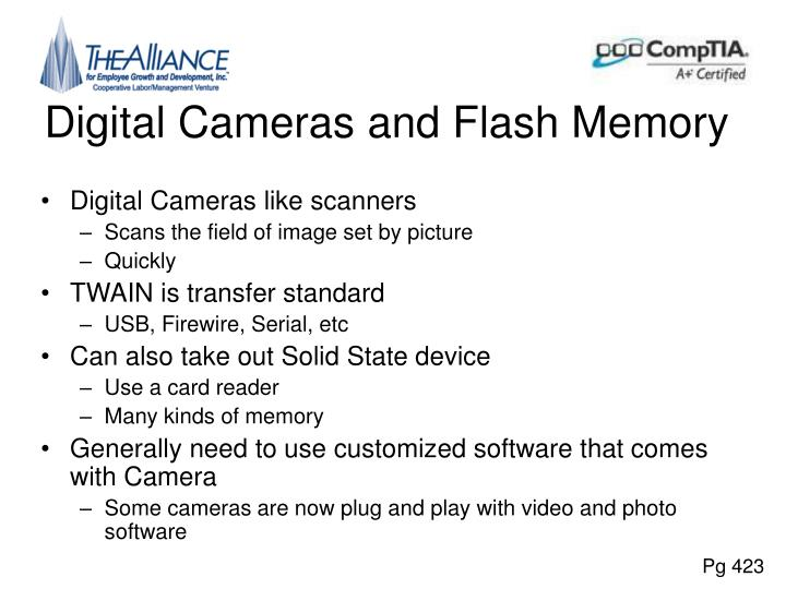 Digital Cameras and Flash Memory