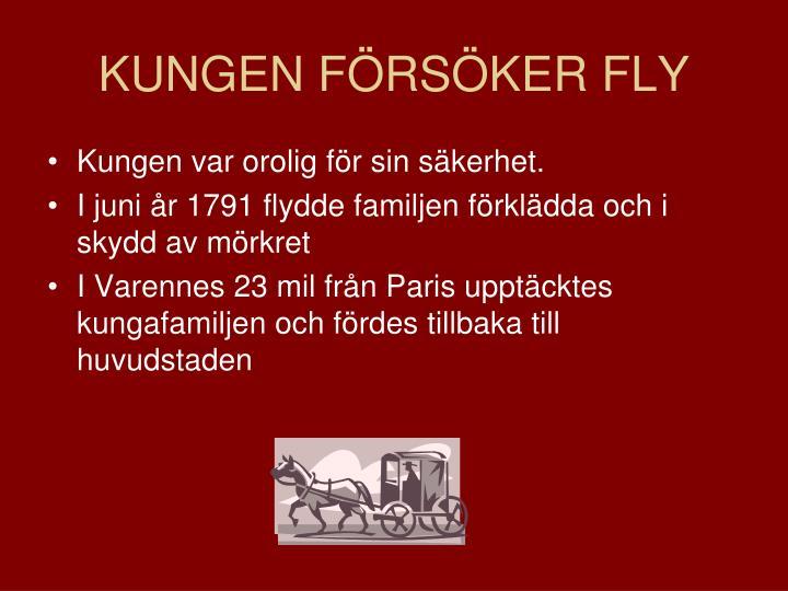 KUNGEN FÖRSÖKER FLY
