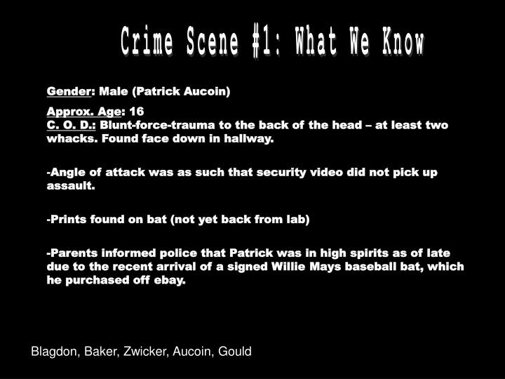 Crime Scene #1: What We Know