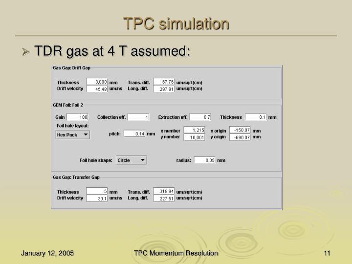 TPC simulation