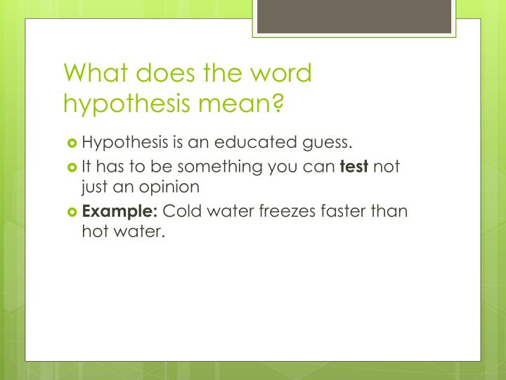 What does the word hypothesis mean