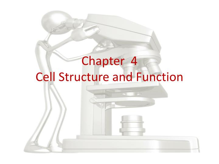chapter 4 cell structure and function n.