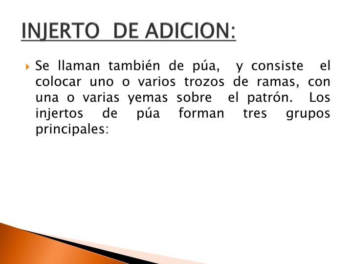 INJERTO  DE ADICION: