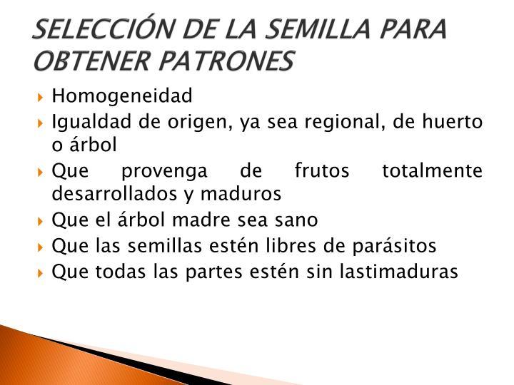 SELECCIÓN DE LA SEMILLA PARA OBTENER PATRONES