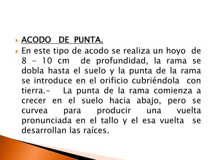 ACODO   DE  PUNTA.