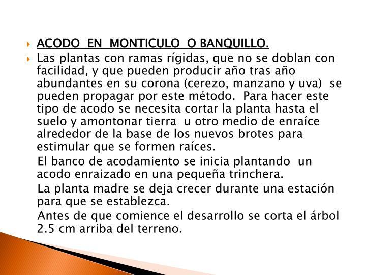 ACODO  EN  MONTICULO  O BANQUILLO.