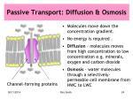 passive transport diffusion osmosis