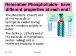 remember phospholipids have different properties at each end