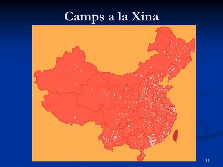 Camps a la Xina