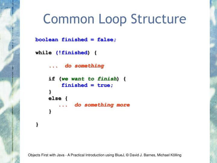 Common Loop Structure