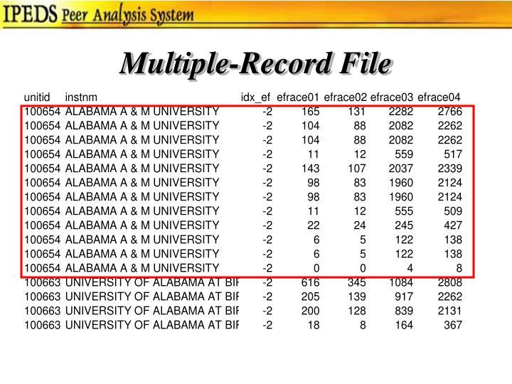 Multiple-Record File