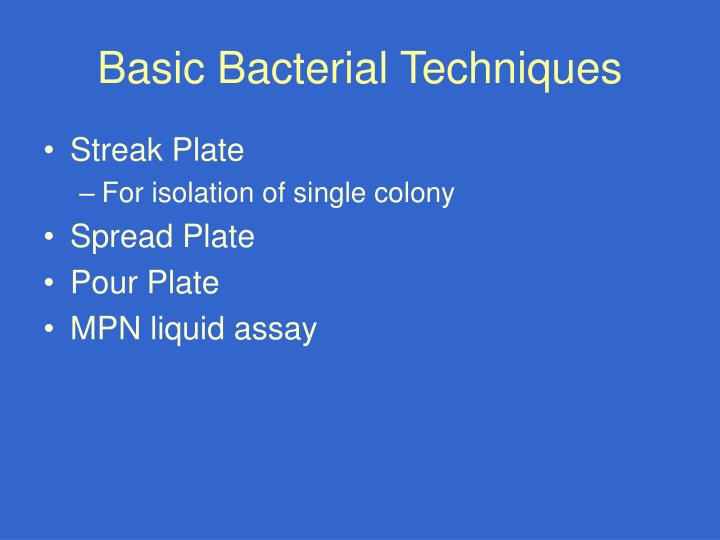 Basic Bacterial Techniques
