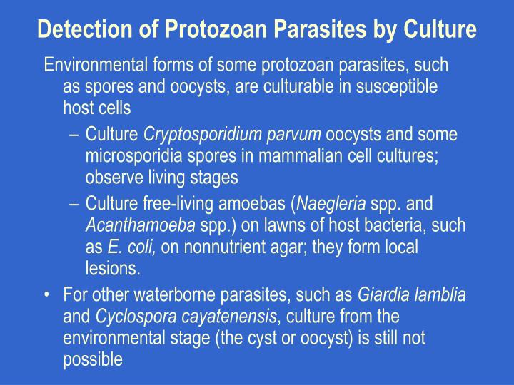 Detection of Protozoan Parasites by Culture