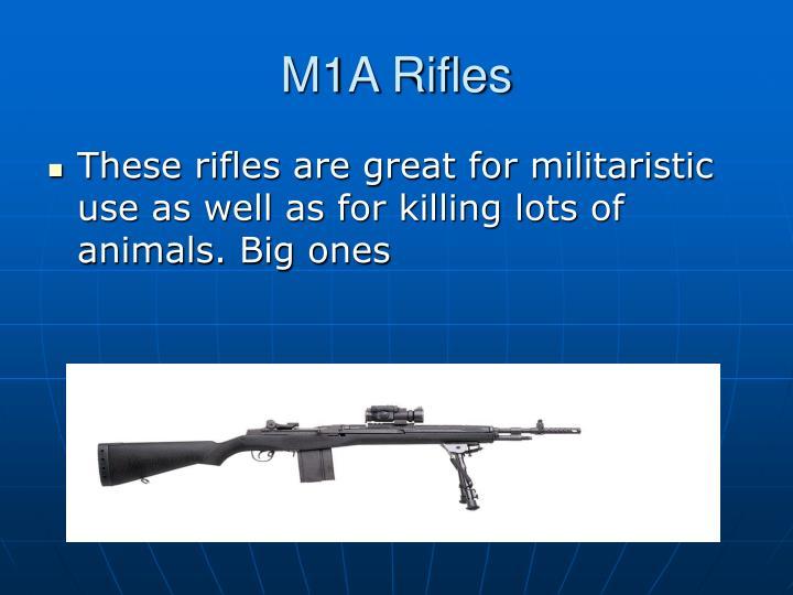 M1A Rifles