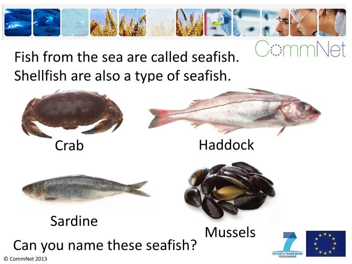 Fish from the sea are called seafish.   Shellfish are also a type of seafish.