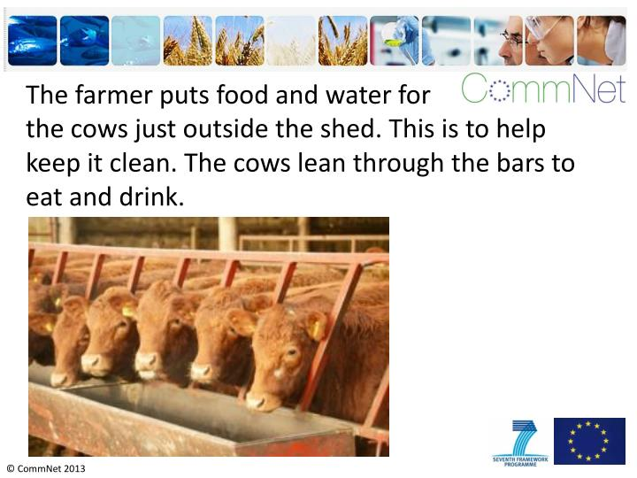 The farmer puts food and water for