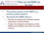 what can the nsrg do for you1