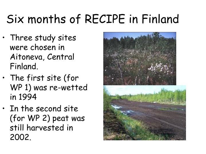 six months of recipe in finland n.