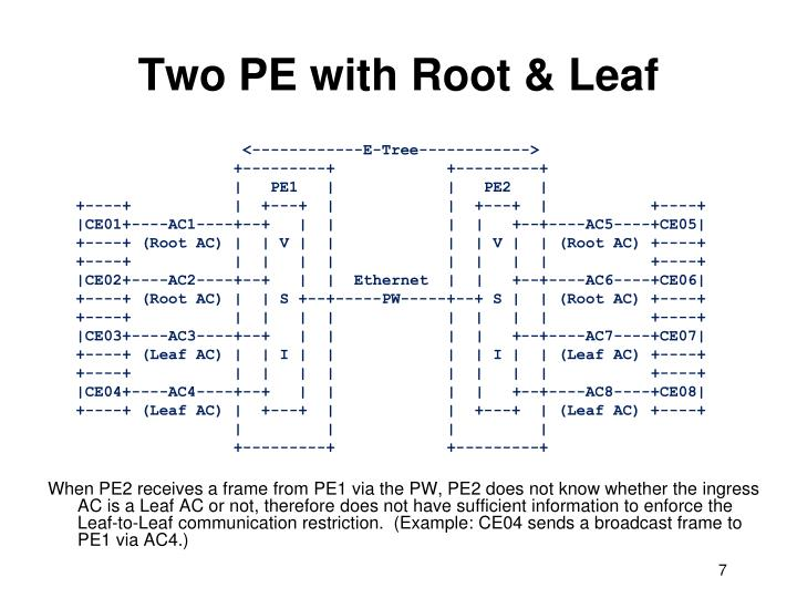Two PE with Root & Leaf