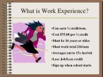 what is work experience