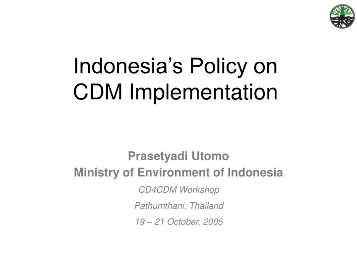 indonesia s policy on cdm implementation n.