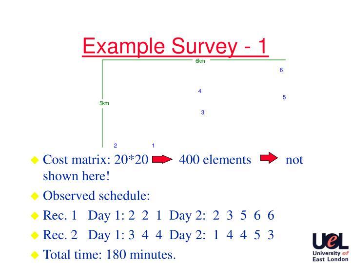 Example Survey - 1