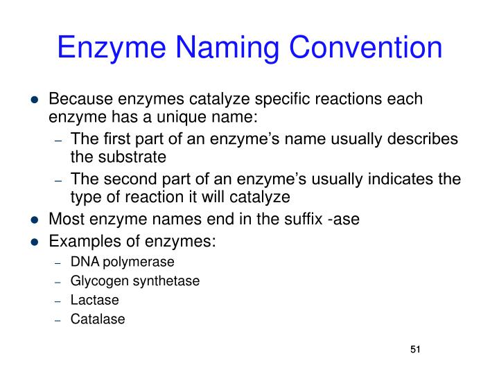 Enzyme Naming Convention