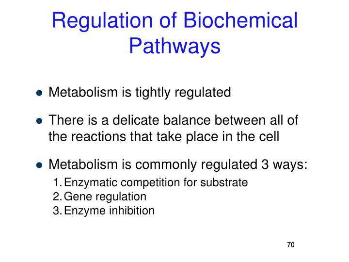 Regulation of Biochemical Pathways
