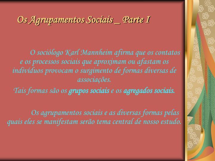 Os agrupamentos sociais parte i1