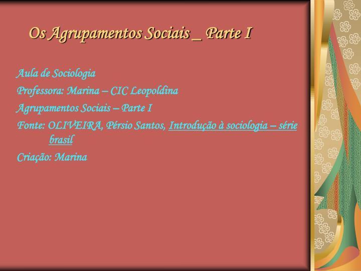 Os Agrupamentos Sociais _ Parte I