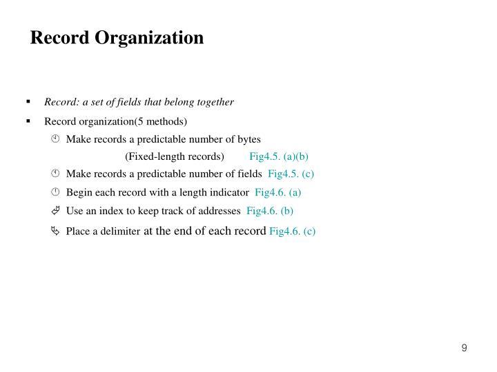 Record Organization