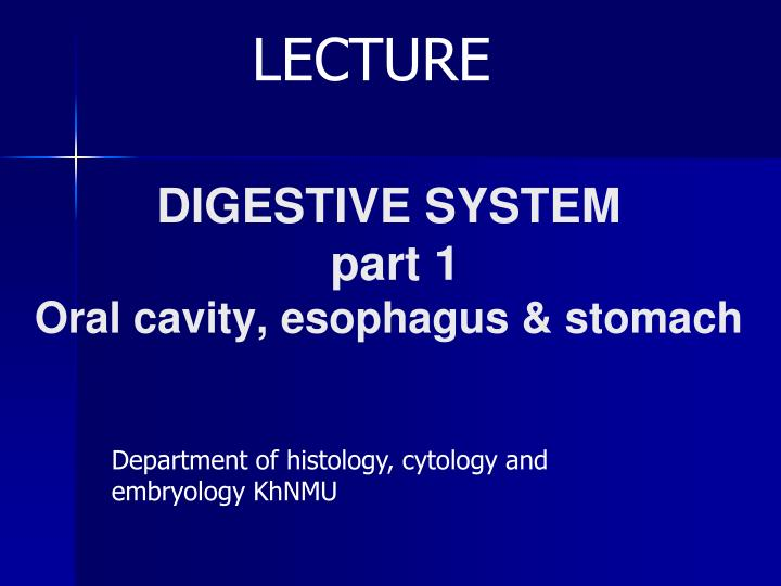 digestive system part 1 oral cavity esophagus stomach n.