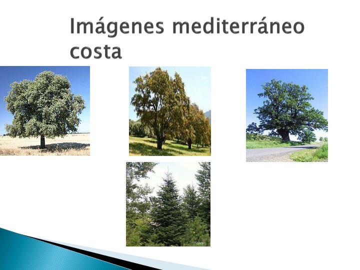 Imágenes mediterráneo costa