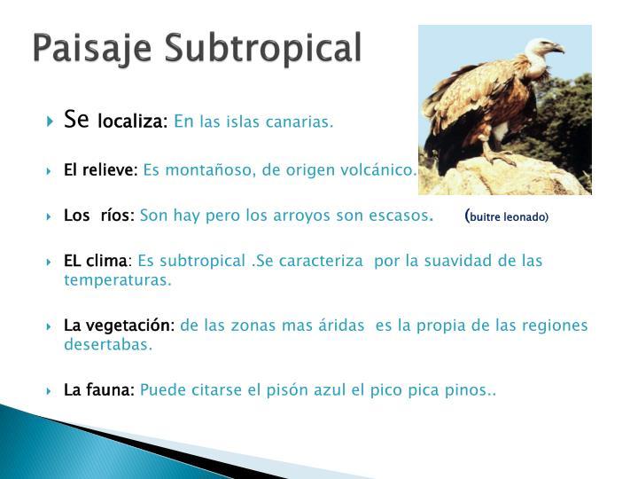 Paisaje Subtropical