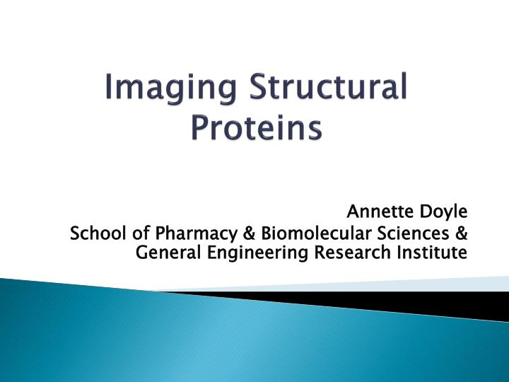 imaging structural proteins n.