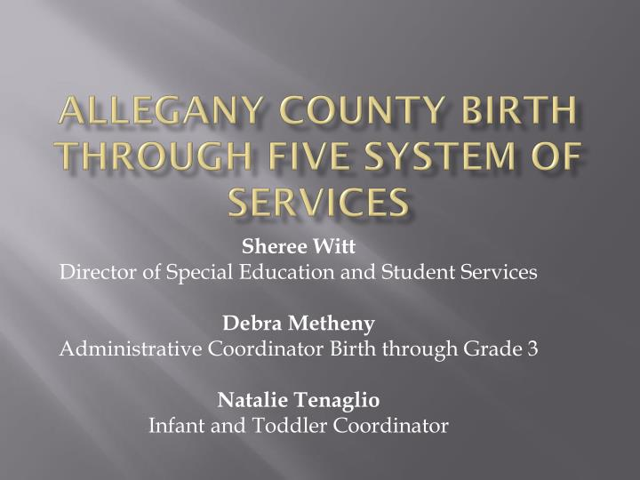 allegany county birth through five system of services n.