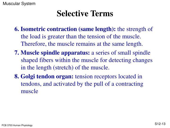 Selective Terms
