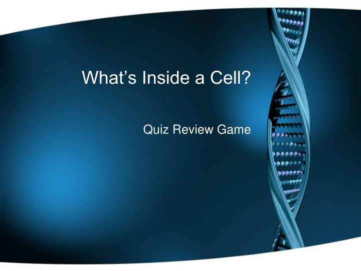 what s inside a cell n.