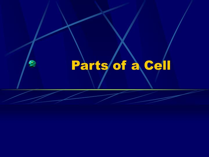 parts of a cell n.