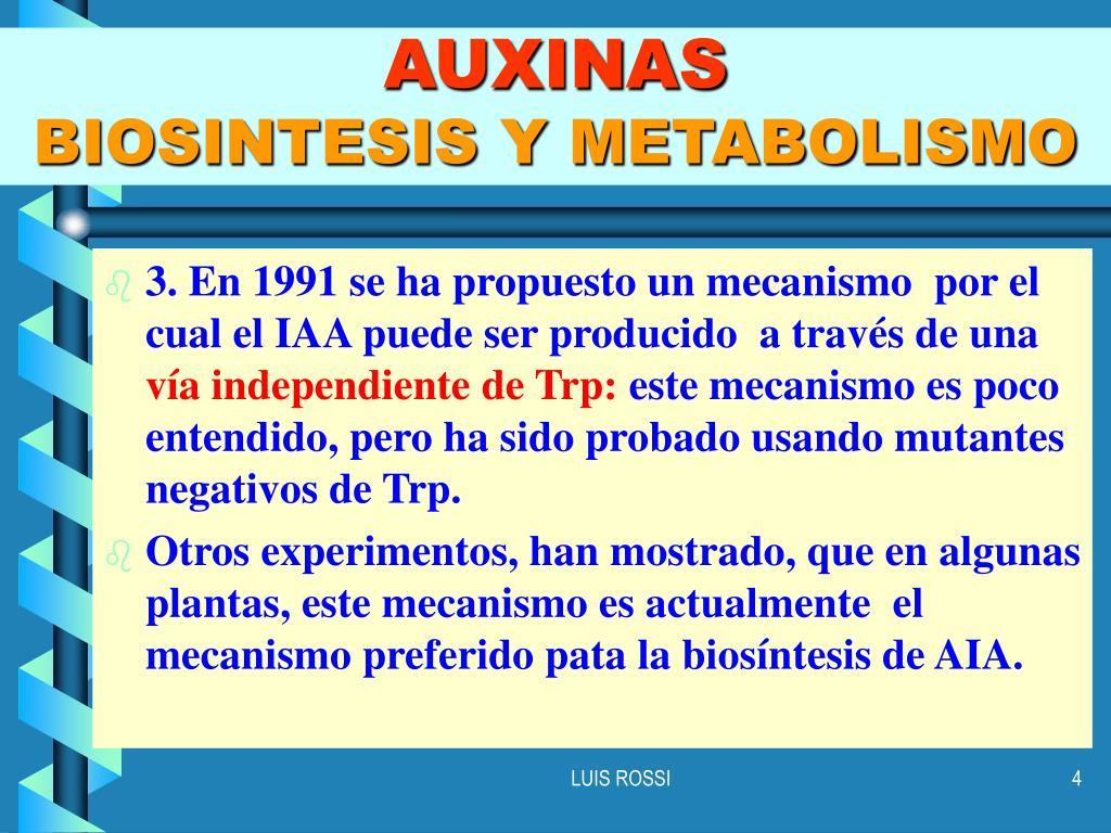 metabolismo del hierro analitica para Dummies