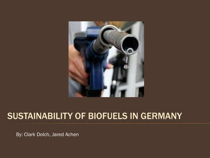 sustainability of biofuels in germany n.